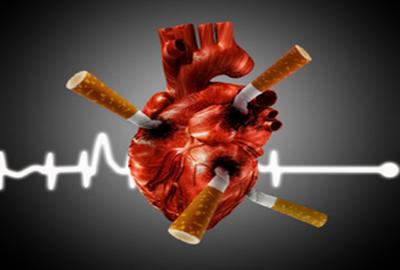 Как табачные изделия влияют на человека купить сигареты немецкие
