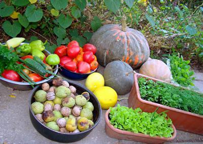 Органическое земледелие и продукты